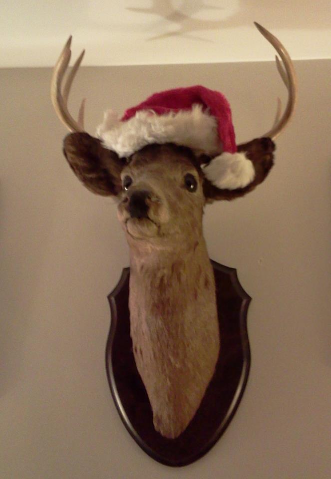 Santa_deer